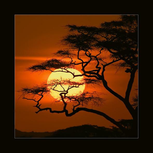 Лучшие рассветы изакаты этого лета поверсии Photoawar. Изображение № 7.