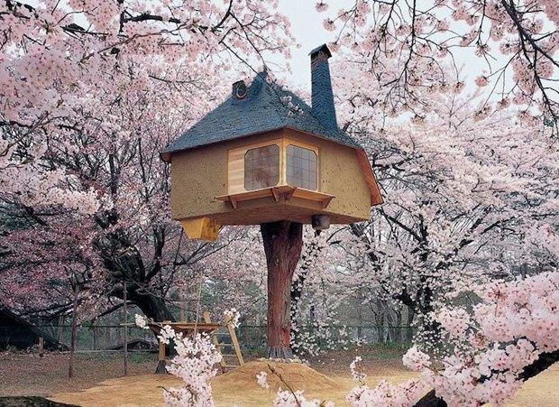 В Японии построили домик на дереве для любования сакурой. Изображение № 1.