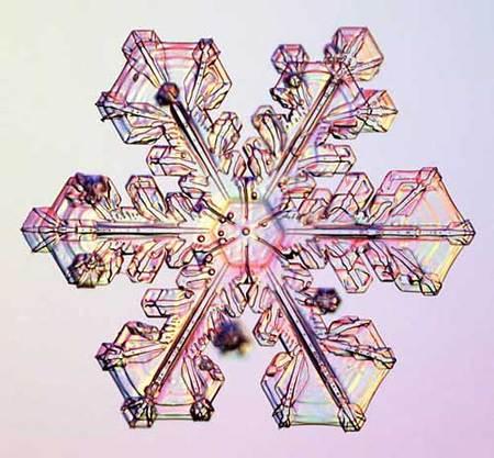 Снежинки – временные произведения искусства. Изображение № 12.