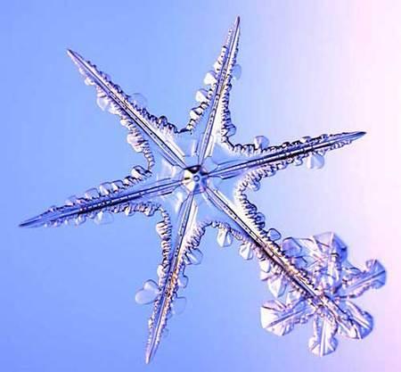 Снежинки – временные произведения искусства. Изображение № 11.
