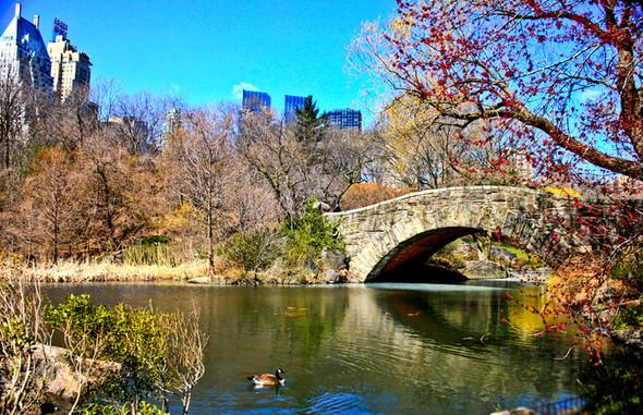 Мечтая о Нью-Йорке. Изображение № 6.