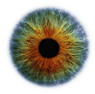 Фотограф Rankin — Eyescapes. Изображение № 1.