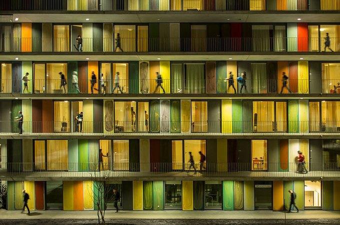 Фотограф: Fernando Guerra / Здание: EPFL Quartier Nord (Экюблен, Швейцария) / Бюро:  Richter Dahl Rocha & Associés / Категория: «Эксплуатация», победитель конкурса. Изображение № 1.