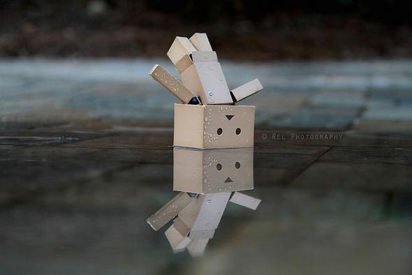 """История игрушки: """"365 Days of Danbo"""". Изображение № 3."""