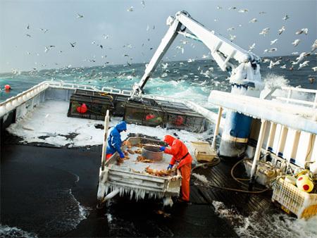 Каково быть рыболовом вАрктике. Изображение № 2.