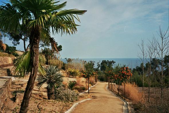 Ботанический сад. Изображение №56.