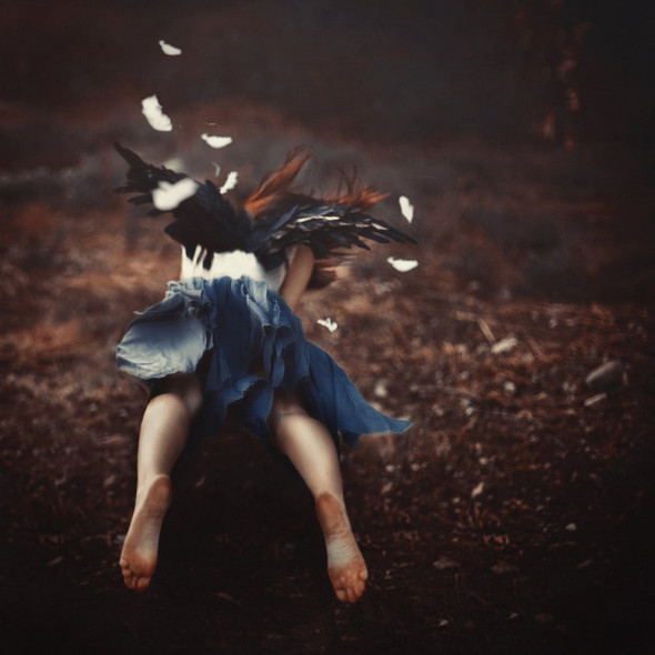 Robby Cavanaugh Photography. Изображение № 18.