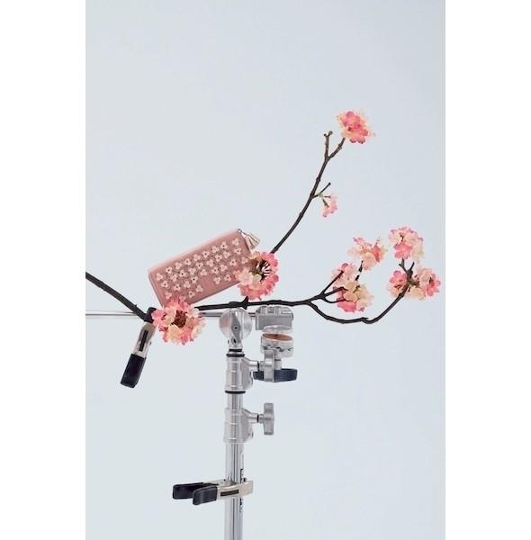 Изображение 11. Лукбук: Loewe Cherry Blossom.. Изображение № 11.