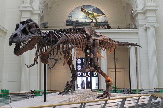 Палеонтологи доказали существование бронтозавров. Изображение № 1.