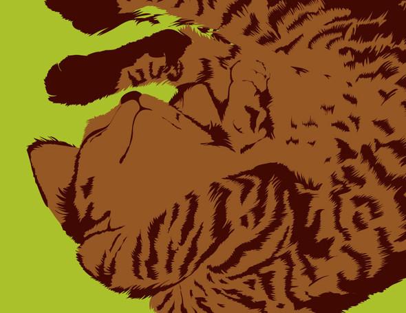 О кошках и подушках. Изображение № 6.