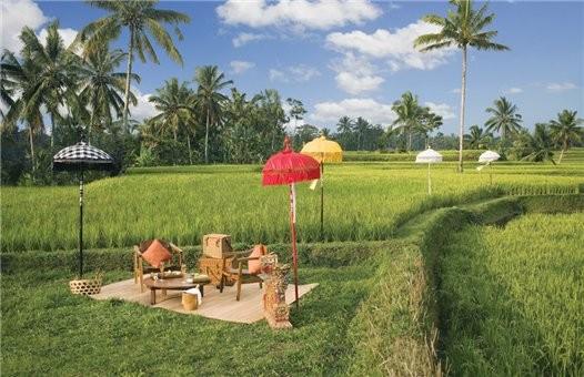 Путешествие на Бали. Изображение № 1.