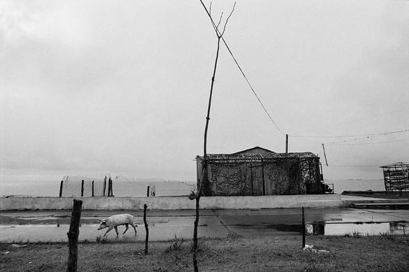 Фотограф Ванесса Виншип. Между Лондоном и Стамбулом. Изображение № 25.