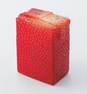 Японский дизайнер продолжил тему «натуральных» упаковок. Изображение № 1.