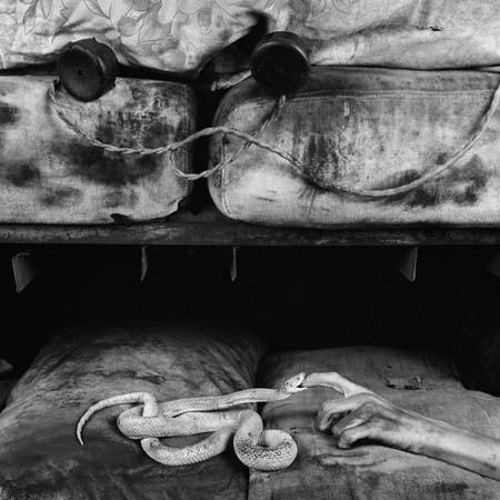ROGER BALLEN: американский фотограф-мистик, живущий в Южной Африке. Изображение № 4.