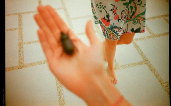 Изображение 2. Фотограф Polina Efremova.. Изображение № 2.