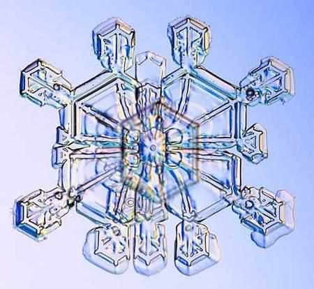 Снежинки – временные произведения искусства. Изображение № 9.