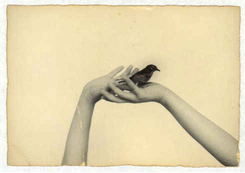 Загадочная японская душа Masao Yamamoto. Изображение № 8.