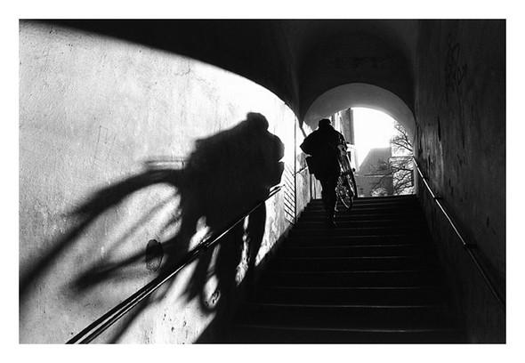 Фотограф: Stanko Abadzic. Изображение № 1.