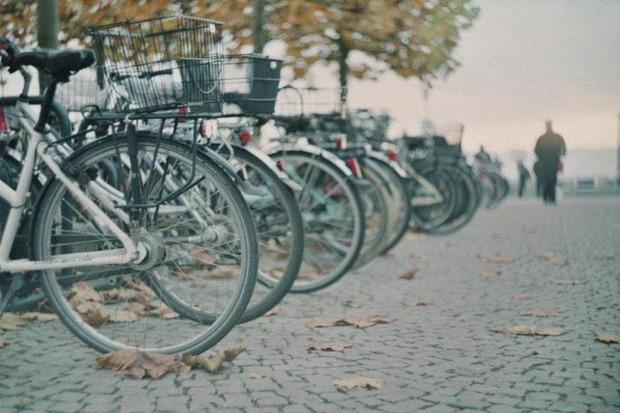 Прогулки с Зенитом: Мой друг - велосипед. Изображение № 5.
