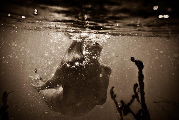 Подводная съемка OmniPhantasmic. Изображение № 7.