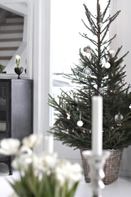 Рождественский декор дома. Простые идеи. Изображение № 6.