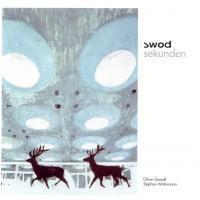 Swod – Мастера электронного минимализма. Изображение № 4.