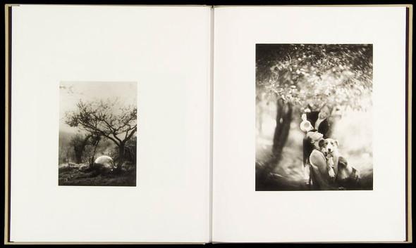 Летняя лихорадка: 15 фотоальбомов о лете. Изображение №169.