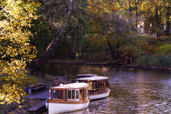 Золотая осень в Риге. Изображение № 3.