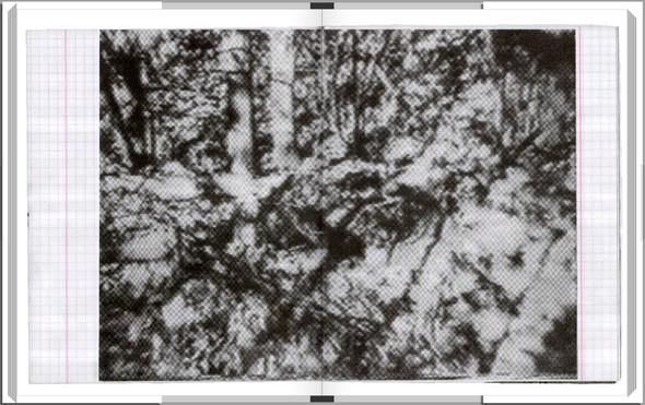Digital-книга с фотографиями Алексея. Изображение № 46.