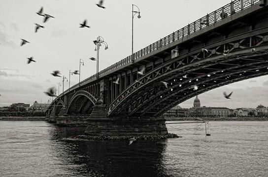 20 черно-белых фотографий мостов совсего мира. Изображение № 6.