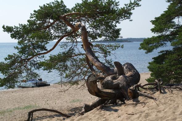 Поход по Ладожскому озеру. Изображение № 23.