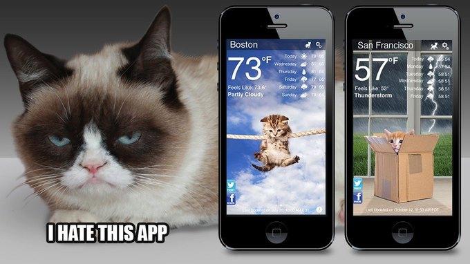 Вышло погодное приложение с Grumpy Cat . Изображение № 1.