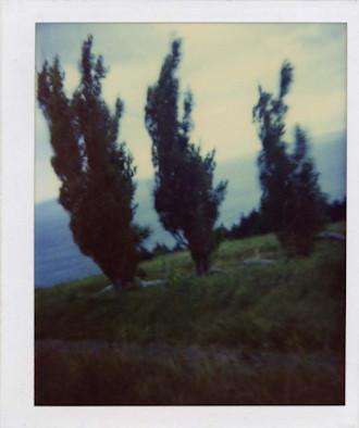 20 фотоальбомов со снимками «Полароид». Изображение №158.