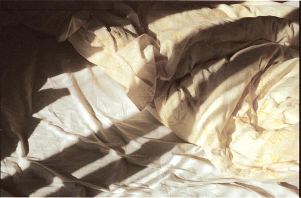 Александр Соколов. Изображение № 12.