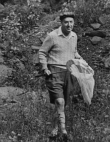 Признания человека-мотылька. Владимир Набоков. Изображение № 5.