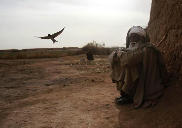 Афганистан. Военная фотография. Изображение № 307.
