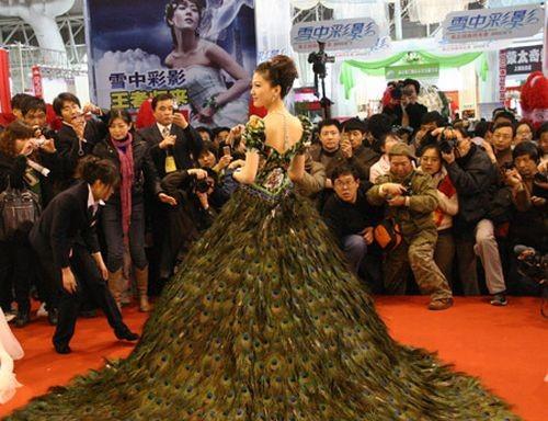 Свадебное платье изперьев павлина. Изображение № 4.