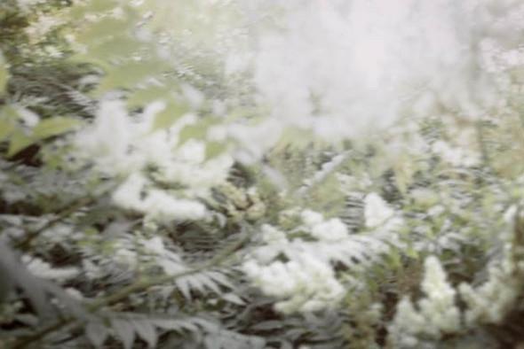 """""""Белые ночи"""" Питера Тена Хуупена. Изображение № 4."""