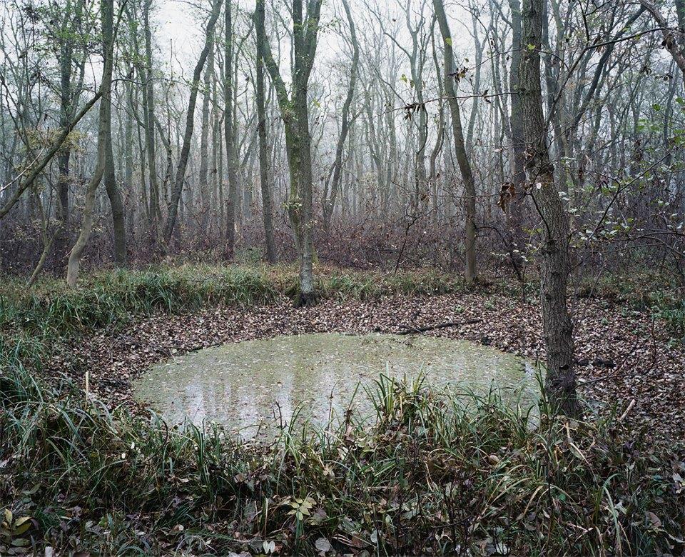 Галерея: как война изменила леса Германии. Изображение № 7.