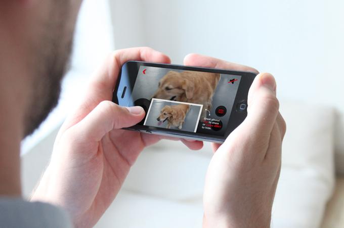Украинские изобретатели гаджета для животных Petcube вышли на Kickstarter. Изображение № 5.
