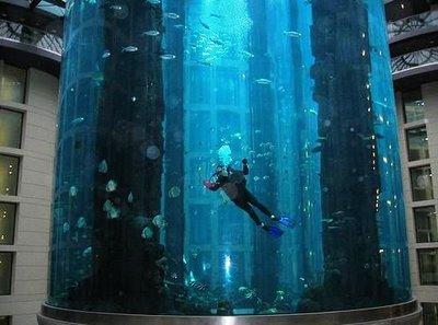 Самый «маленький» аквариум. Изображение № 4.