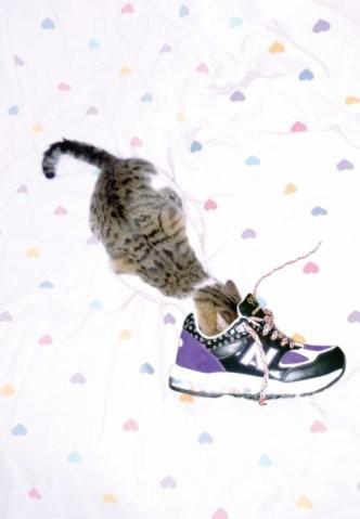 New animal models - животные в фэшн съемках. Изображение № 15.