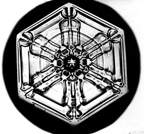 Уилсон Бентли иего снежинки. Изображение № 6.