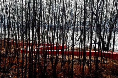 RedRibbon великая китайская скамья. Изображение № 13.