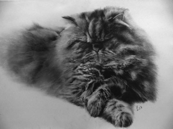 Paullung.и его коты. Изображение № 9.