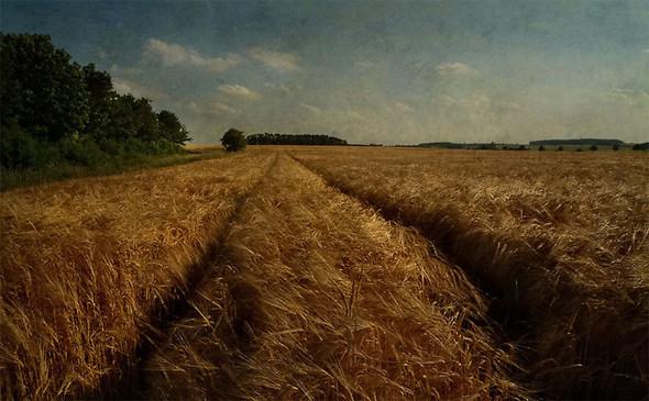 Томас Гаук. Пейзажи на перекрестке времен. Изображение № 12.