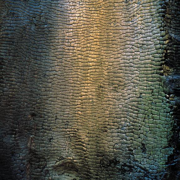 Мастера пейзажной съемки. Christopher Burkett. Изображение № 30.