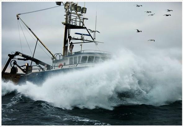 Corey Arnold. Морская фотография. Изображение № 2.