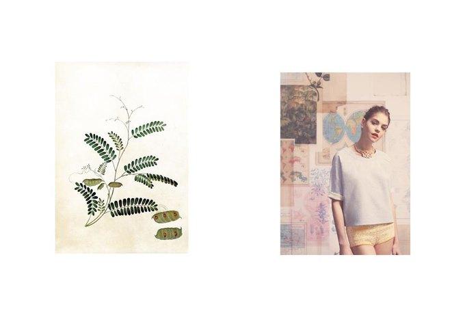 Показаны новые лукбуки Balenciaga, Chanel и Zac Posen. Изображение № 70.