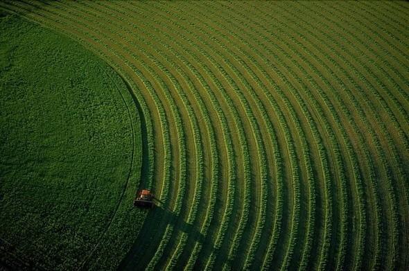 Трактор на поле возле Бозмана. Монтана, США. Изображение № 50.